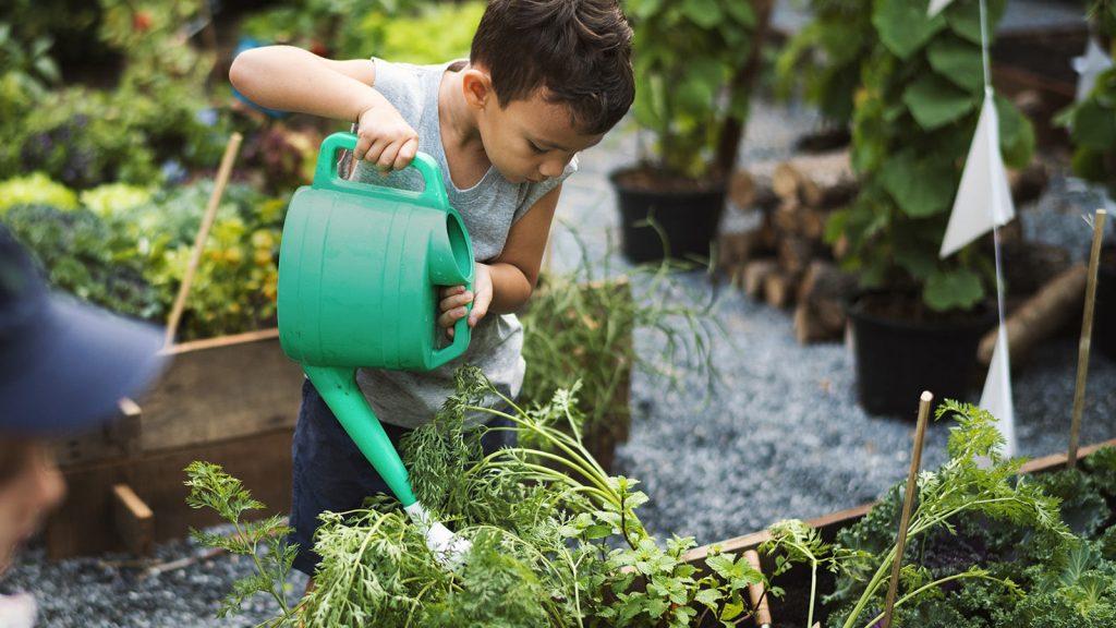 باغداری در قرنطینه