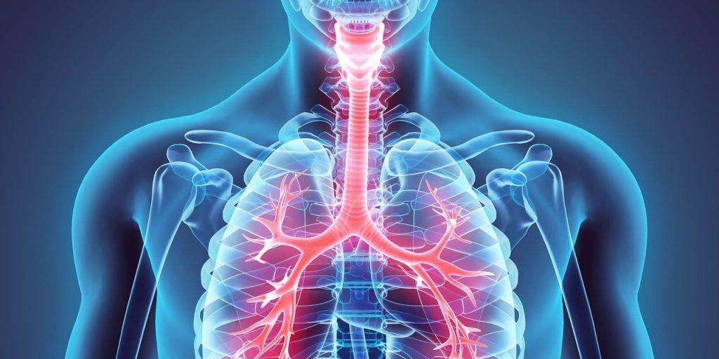 مزایای فیزیوتراپی تنفسی و چرخه تنفس